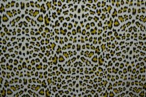 Cotton jersey print - wow 14-25 silbergrau