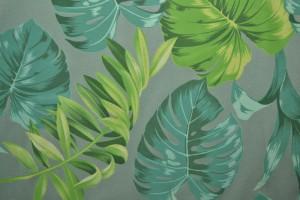 Cotton jersey print - wow 16-34 alt grün