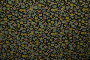 Cotton jersey print - wow 10-03 schwarz