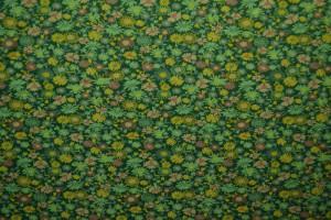 Cotton jersey print - wow 10-32 grün