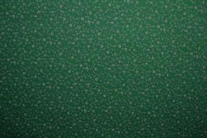 Cotton jersey print - wow 11-32 grün